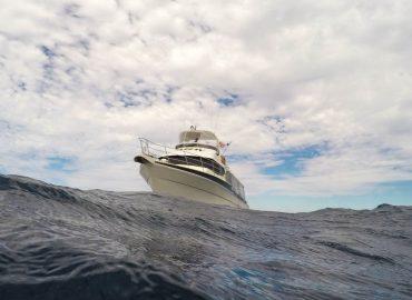 zenith_insurance_marine_cargo_insurance